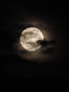 Sept Super Moon 2014 034
