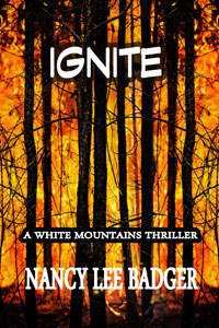IGNITE-ARe