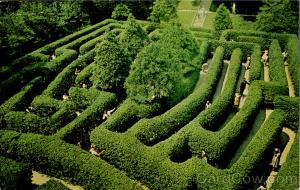 "A post card from the 60""s of The Governor's Palace Maze Williamsburg"