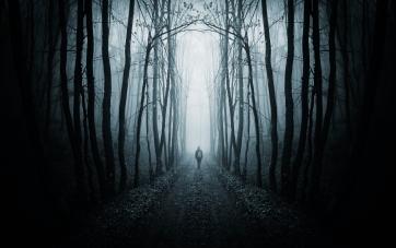 Man walking on a path in a dark forest with fog
