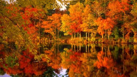 autumn_lake_reflection_fall_leaves_nature_hd-wallpaper-1863707