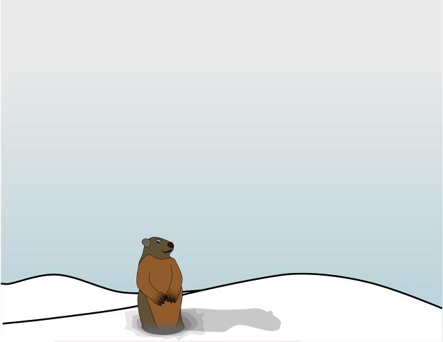 groundhog and shadow